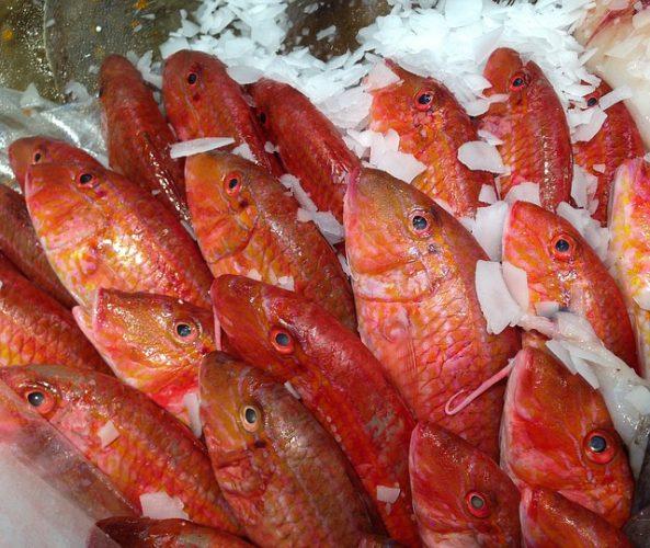 Ventajas de comer pescado regularmente.