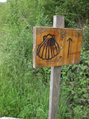 Ideas para sobrevivir en una ruta del Camino de Santiago portugués